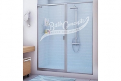 1 Semi-frameless swinging door and an inline panel enclosure with a full structure frame CLEAR GLASS  BRUSHED NICKEL HARDWARE 391
